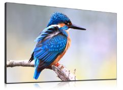 "55"" Super Narrow Bezel Tiling Video Wall Display"